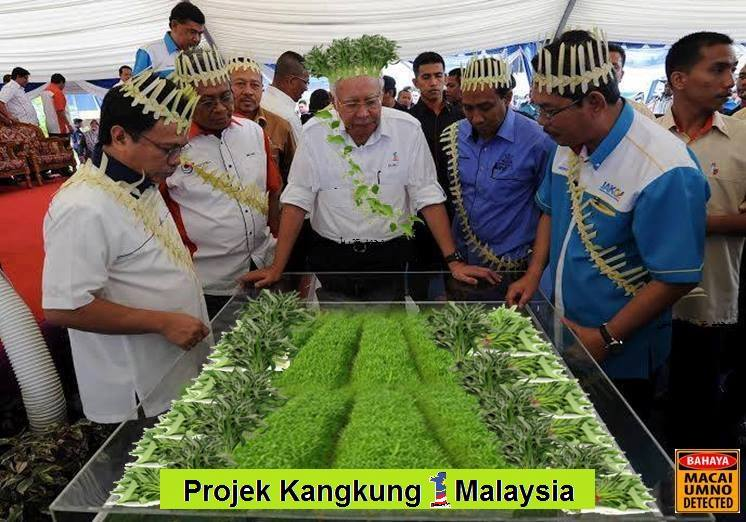 Cabinet wanted strong action on kangkung jokes, but Internet guarantees won the day