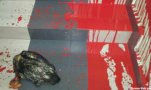 Teresa Kok's service centre splashed with red paint, dead chicken found at entrance