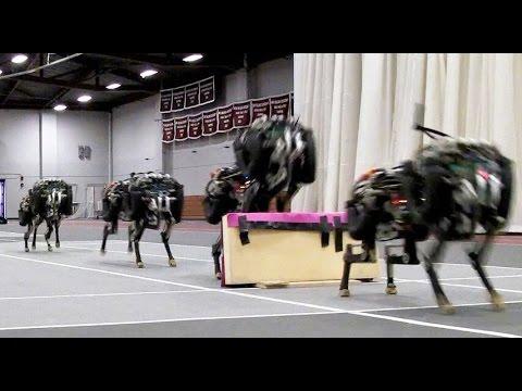 Cheetah Robot Runs & Jumps