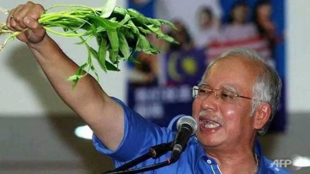 Najib Dan Kangkung